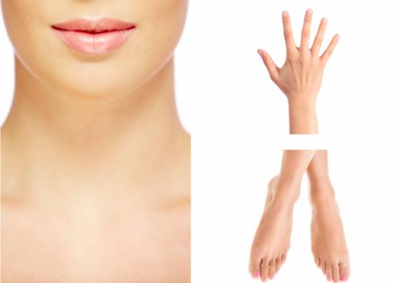 女性の首・手首・足首